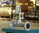 Development and implementation of the Armature-Flanged plant modernization program. Project cost: 20 million Euro